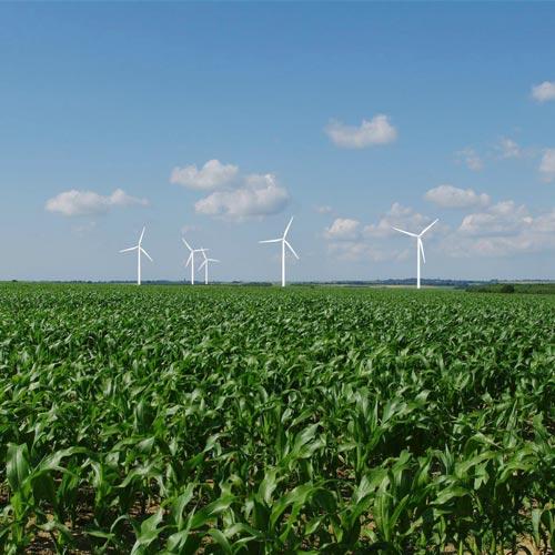 matutina paysage paysagiste energie eoliennes approches et méthodes